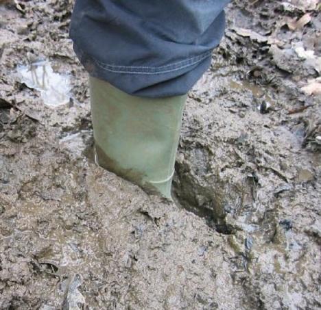 Muddy Boots 01